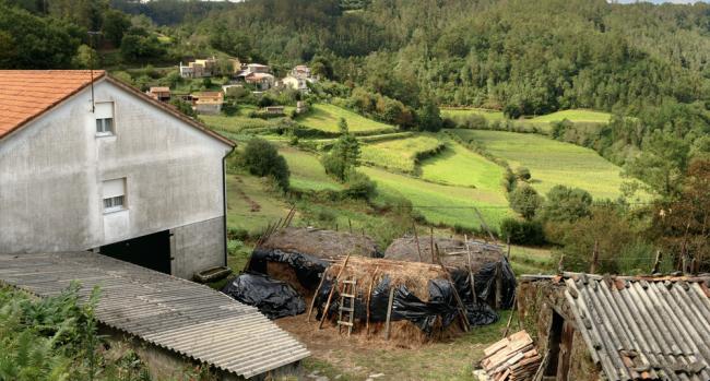 proteger una vivienda del fuego en un entorno forestal